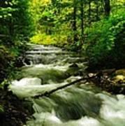 Viento Creek In June Poster