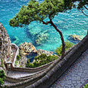 View From Capri.italy Poster