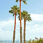 View Of Marina Poster