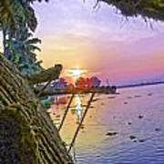 View Of Sunrise From A Houseboat Poster
