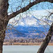 View Through The Trees To Longs Peak Poster