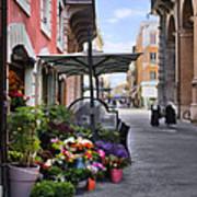 Village Flowershop Poster