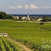 Village Of Aloxe Corton. Cote D'or. Burgundy. France Poster