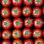 Vine Tomato Pattern Poster