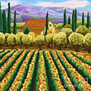 Vineyard With Olives Tuscany Poster