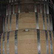 Vineyards In Va - 121218 Poster