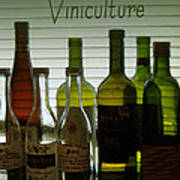Viniculture  Poster