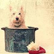 Vintage Bathtime Poster