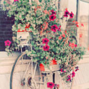 Vintage Bicycle Flowers Photograph Poster by Elle Moss