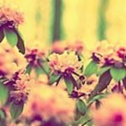 Vintage Bumblebee's Bush Poster