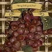 Vintage Fruit Of The Vine Poster
