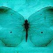 Vintage Grunge Butterfly Poster