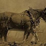 Vintage Horse Plow Poster