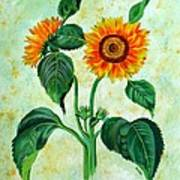 Vintage Sunflowers Poster
