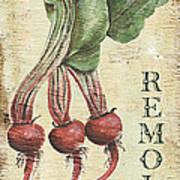 Vintage Vegetables 3 Poster