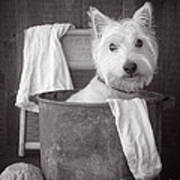 Vintage Wash Day Poster