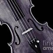 Viola Violin Photograph Strings Bridge In Sepia 3263.01 Poster