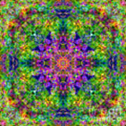 Violet Cosmos Mandala Poster
