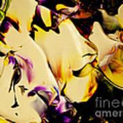 Botanical # 1212 Poster