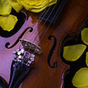 Violin With Yellow Rose Poster