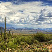 Visions Of Arizona  Poster by Saija  Lehtonen