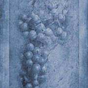 Vitis Cyanotype Poster