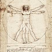 Vitruvian Man. 1492. Renaissance Art Poster