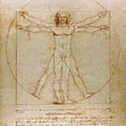Vitruvian Man By Leonardo Da Vinci  Poster by Karon Melillo DeVega