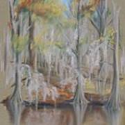 Waccamaw River Impressions Poster