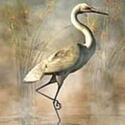 Wading Egret Poster