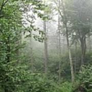 Waft Of Mist - Shenandoah Park Poster