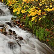 Wahkeena Falls At Columbia River Gorge In The Fall Poster