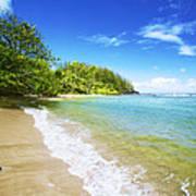 Waikoko Beach Shore Poster