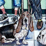 Waiting At The Vet's Office Poster by Chris Dreher