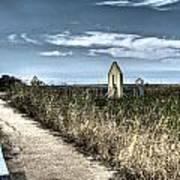 Walkway In The Marsh 2 Poster