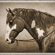 War Horse Old Photo Fx Poster by Crista Forest