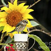 Sunflower And Warbler Bird Poster