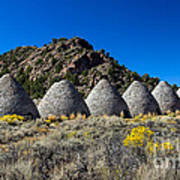 Wards Charcoal Ovens Poster by Robert Bales