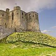Warkworth Castle With  Daffodils Poster