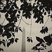 Washington Monument 2 Poster