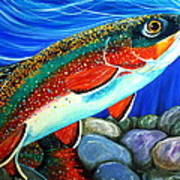 Brook Trout  Poster