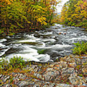 Watching It All Go By  At Beaver's Bend Broken Bow Fall  Foliage Oklahoma Poster