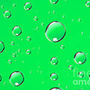 Water Drops On Green Poster