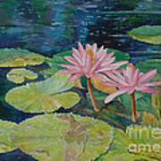 Water Lily In The Morning Poster