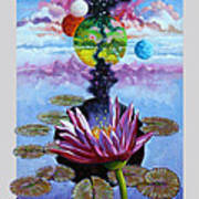 Water Lily Seeds Poster