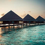 Waterbungalows At Sunset Poster