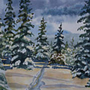 Original Watercolor - Colorado Winter Pines Poster