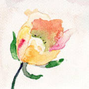 Watercolor Illustration With Beautiful Flower  Poster