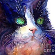 Watercolor Tuxedo Tubby Cat Poster