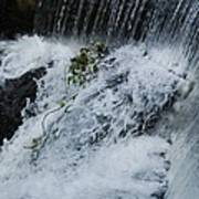 A Waterfall In Bantry, Ireland Poster